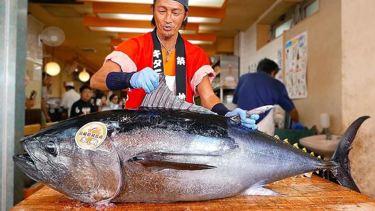 Tonno pesca Giappone sushi